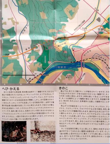 嵐山フィールドマップ1.jpg